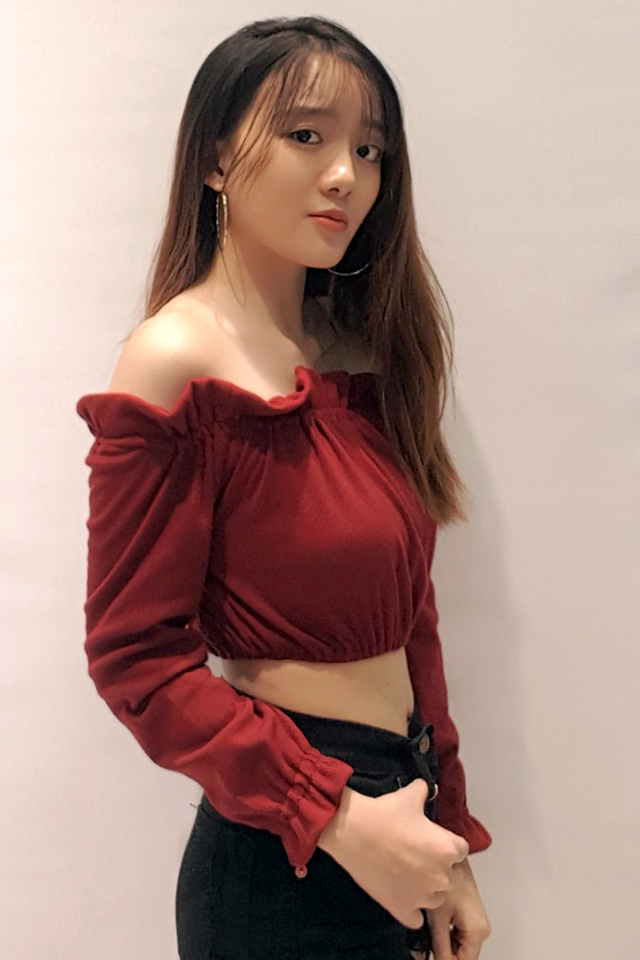 Knit Crop Top Wine Red
