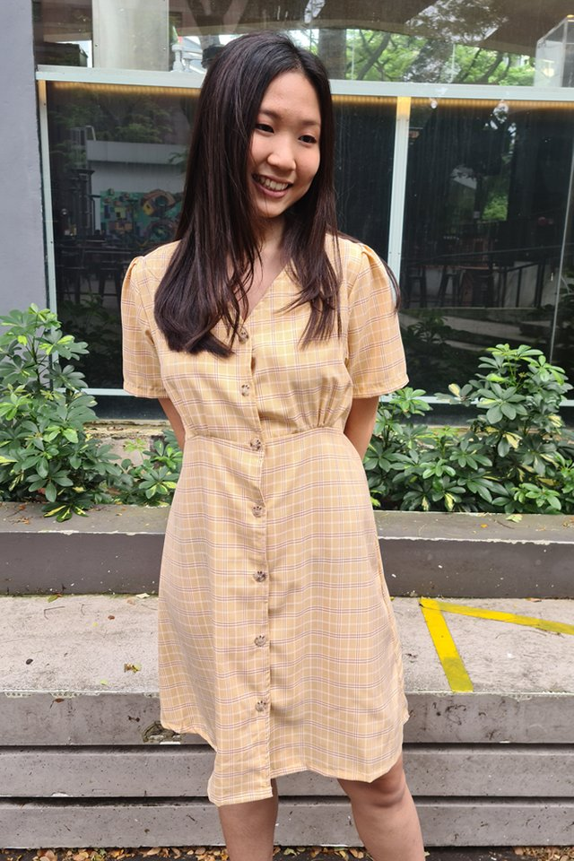 Checks Button Down Dress (3 Colours)
